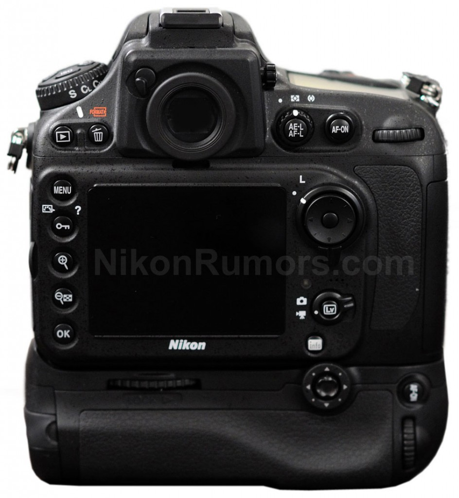 Nikon D800 photo - back of camera