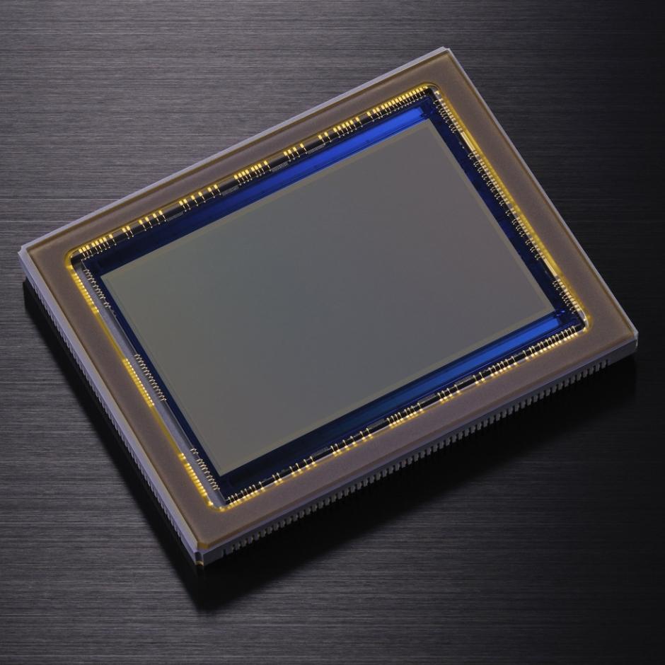 Nikon D800 36MP CMOS Sensor